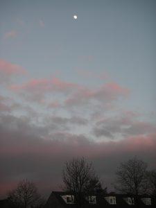 tussen-winter-en-lente-2007-004